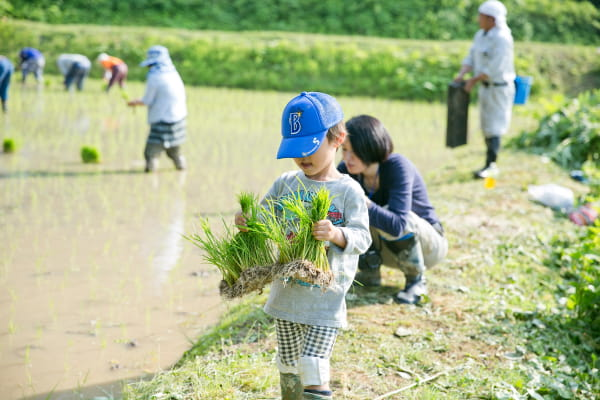 農作業イベントの様子